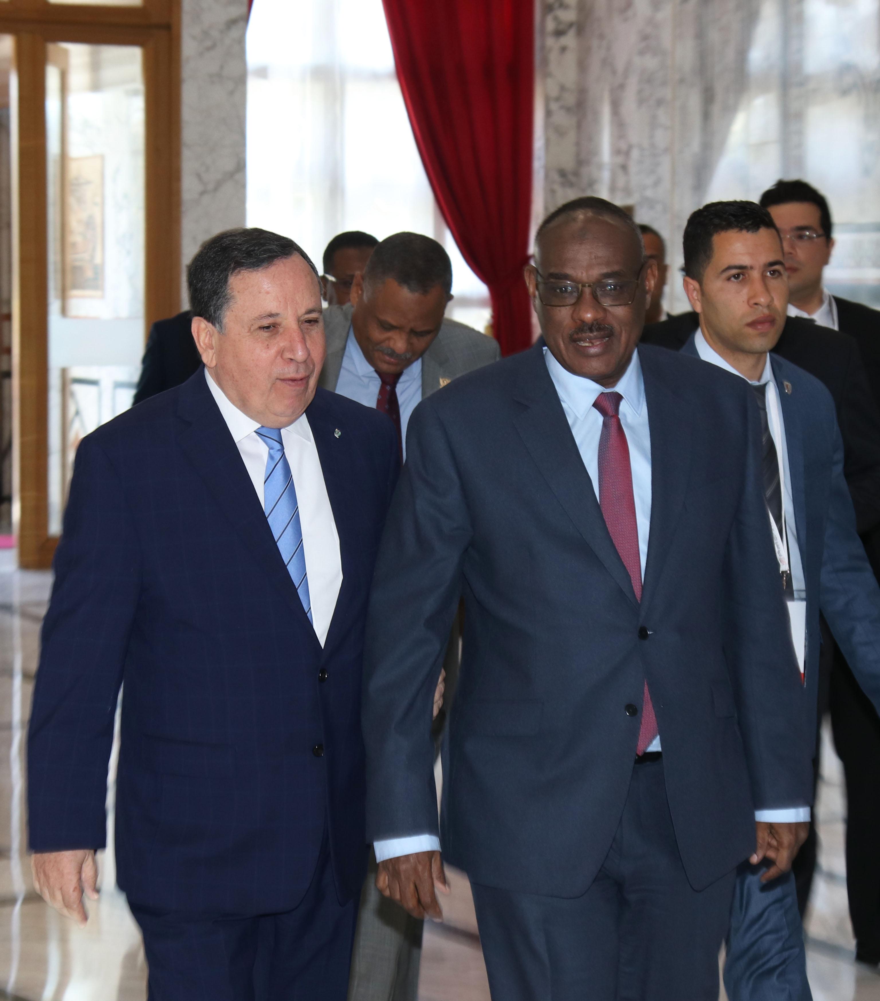 وزير الخارجية يبحث مع نظيره السوداني جدول أعمال القمة العربية والتعاون الثنائي بين البلدين: