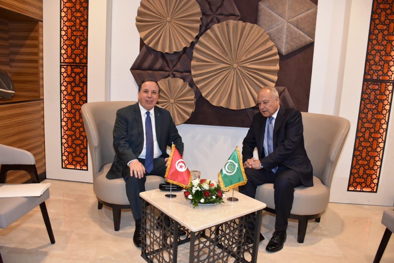 وزير الخارجية يلتقى الأمين العام لجامعة الدول العربية: