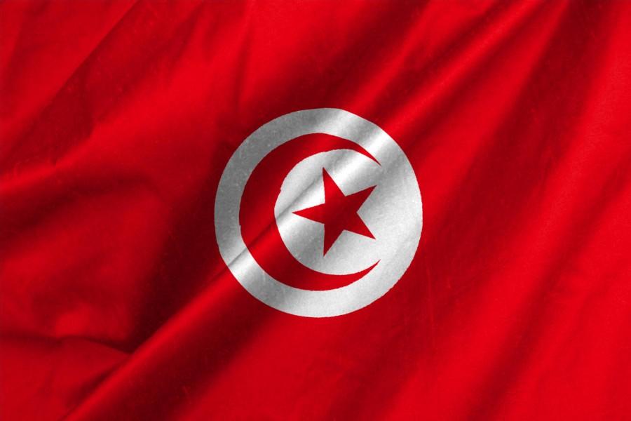 تونس تعبر عن  أملها في تحقيق انتقال سلمي للحكم يلبي تطلعات الشعب السوداني المشروعة إلى الحرية والديمقراطية والتنمية: