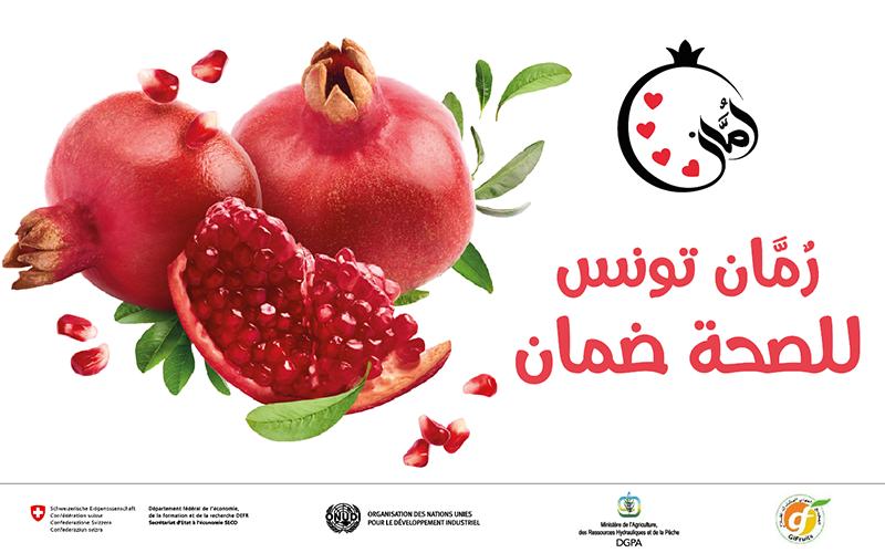 رمان تونس للصحة ضمان: